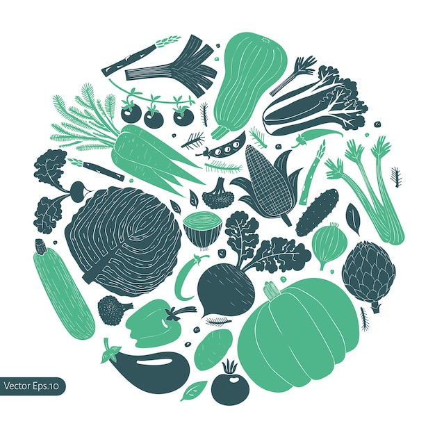 Leuke hand getrokken groenten ontwerpsjabloon. Premium Vector