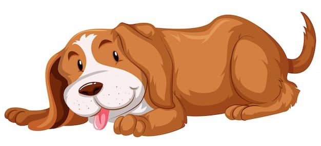 Leuke hond met bruine vacht Gratis Vector