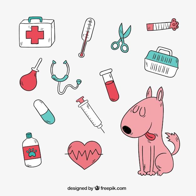 Leuke hond met veterinaire elementen Gratis Vector