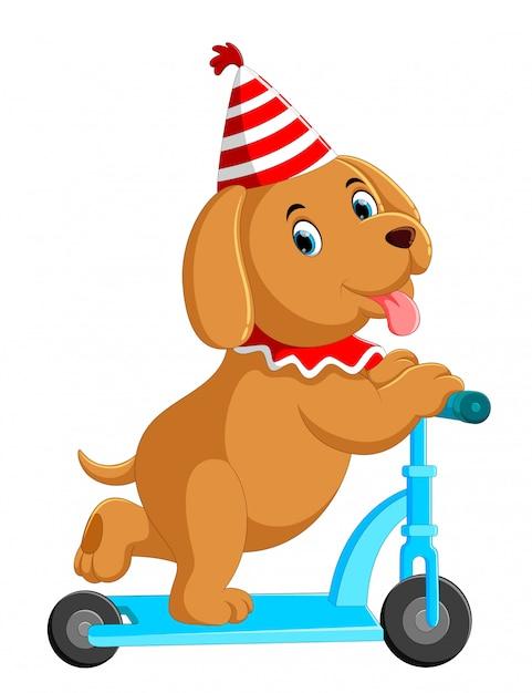 Leuke hond op scooter Premium Vector
