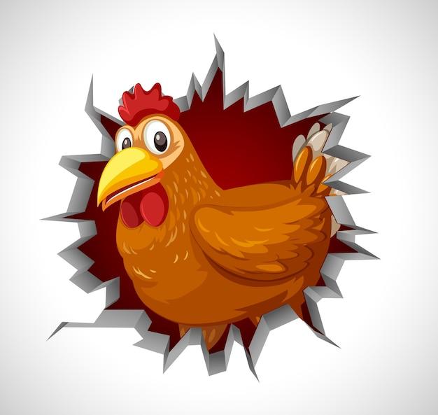 Leuke kip die uit gebarsten muur komt Premium Vector