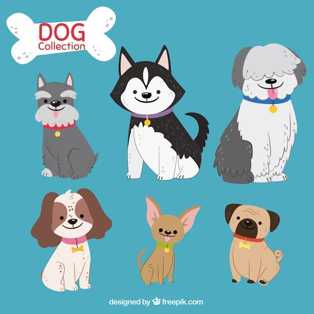 Leuke pak van zes hand getekende honden Gratis Vector