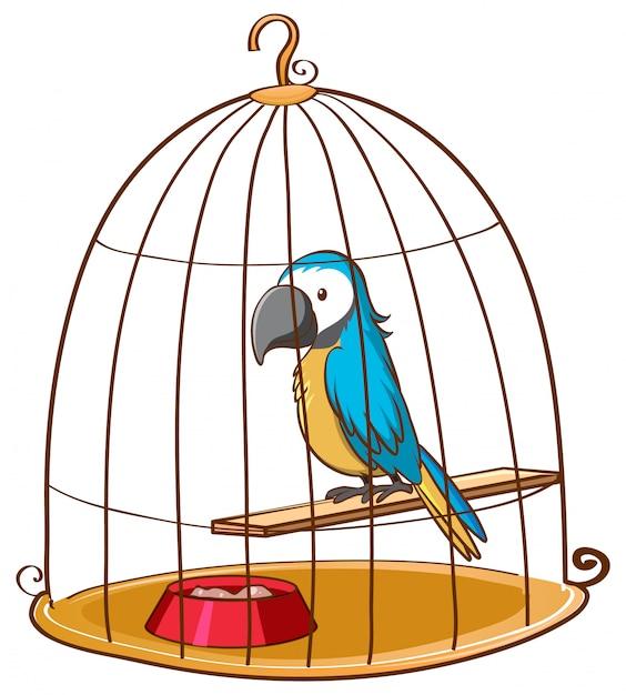 Leuke papegaai in kooi op wit Gratis Vector