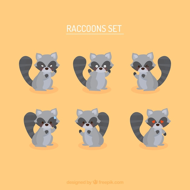 Leuke set van cartoon wasberen Premium Vector