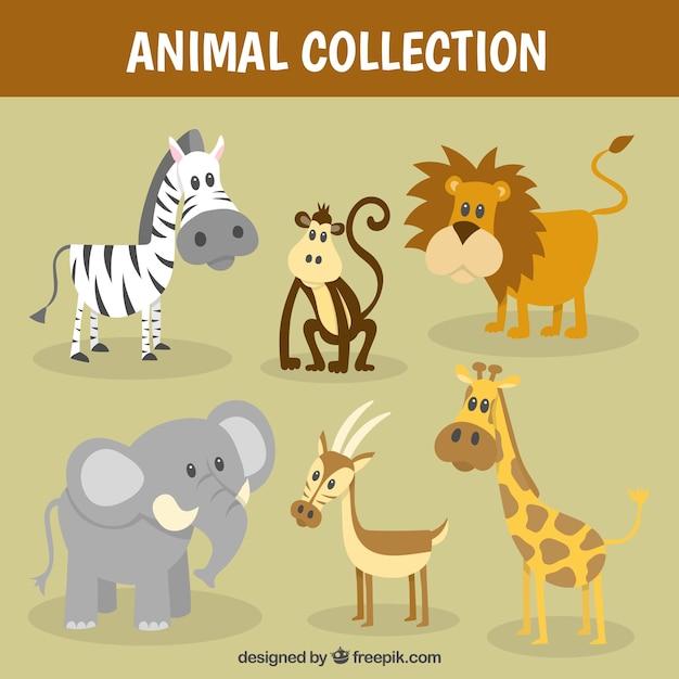 Leuke wilde dieren collectie Premium Vector