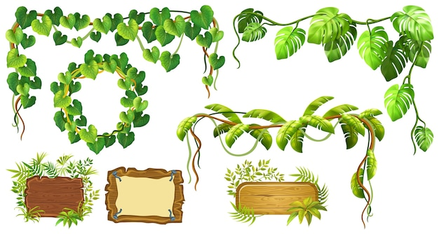 Liana-tak en frame van bladeren Gratis Vector