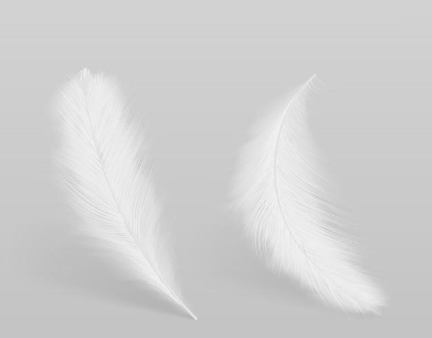 Liggend, vallende vogels schoon wit, pluizig veren 3d-realistische vector geïsoleerd met schaduwen. zachtheid en gratie, zuiverheid en tederheid conceptontwerpelement. lichtgewicht symbool Gratis Vector