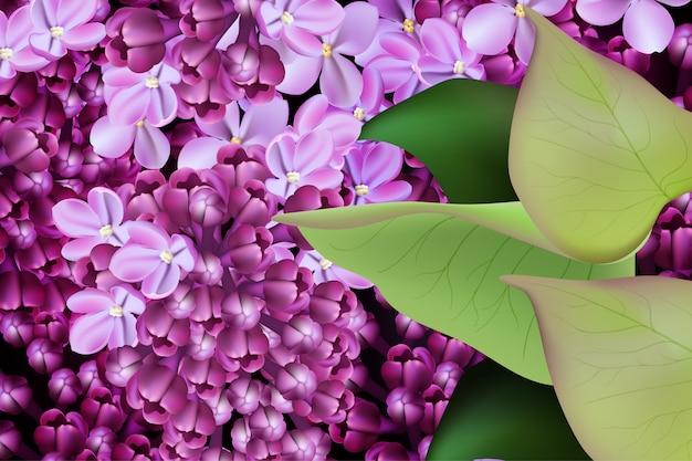 Lila bloem lente bloemen achtergrond Premium Vector