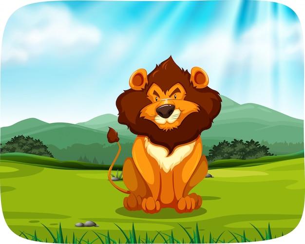 Lion zit in grasland Gratis Vector