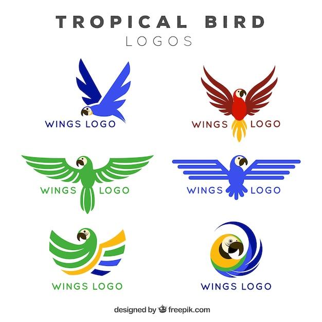Logos van tropische vogelvleugels Gratis Vector