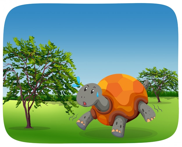 Lopende schildpad in de scã¨ne van de natuur Premium Vector