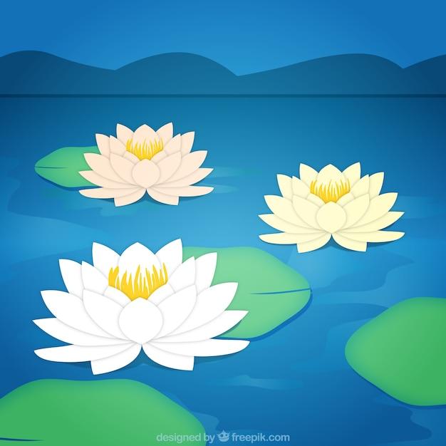 Lotusbloemen achtergrond Gratis Vector