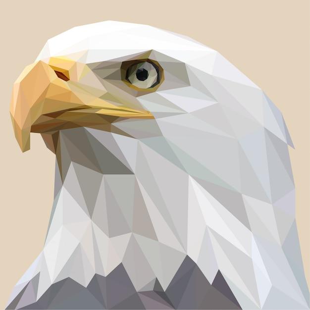 Lowpoly van white bald eagle Premium Vector