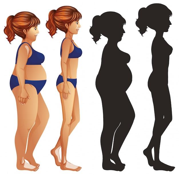 Magere en dikke vrouwen met silhouet Gratis Vector