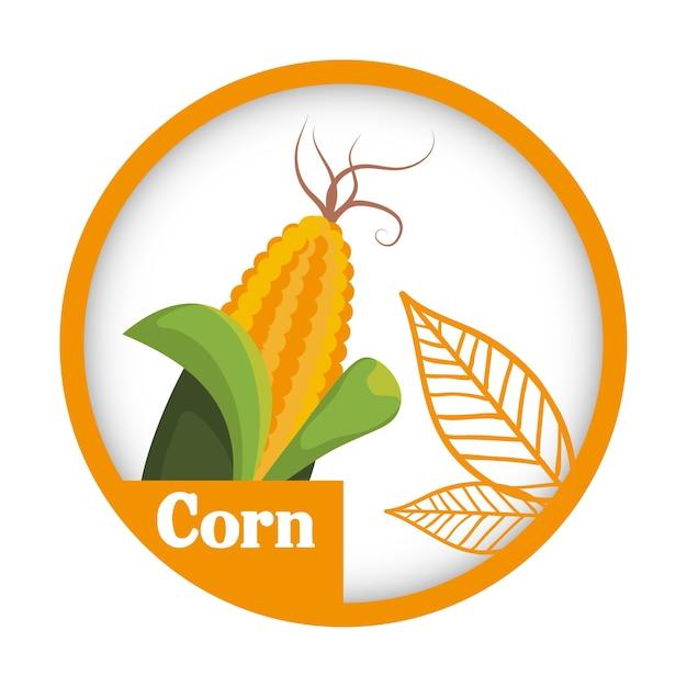 maïs plantaardig vers gezond etiket | vector | premium download