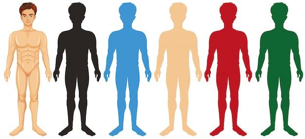 Man en verschillende silhouet kleur lichamen Gratis Vector