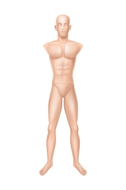 Mannelijke mannequin, oefenpop voor kledingwinkel. Gratis Vector