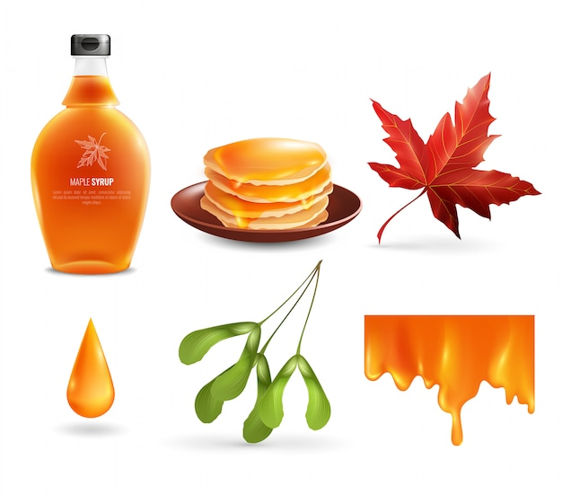 Maple siroop set Gratis Vector