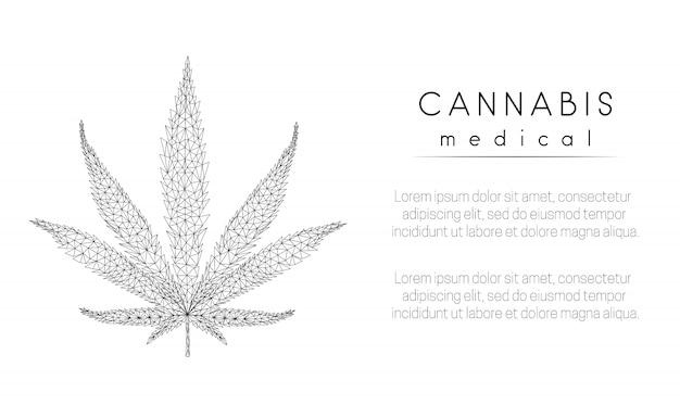 Marihuana-blad Premium Vector