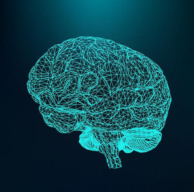 Menselijk brein, het structurele rooster van polygonen, moleculair rooster. Premium Vector