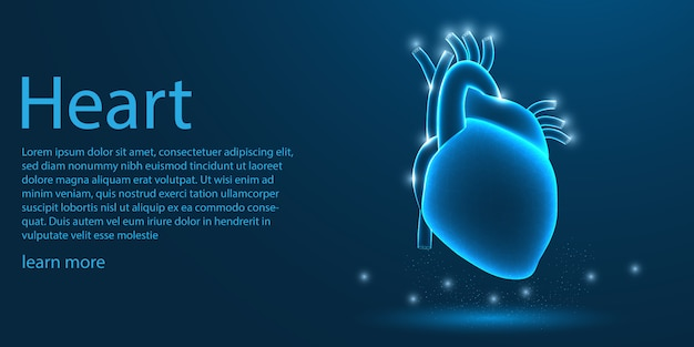 Menselijk hart medisch, laag polyconcept. Premium Vector