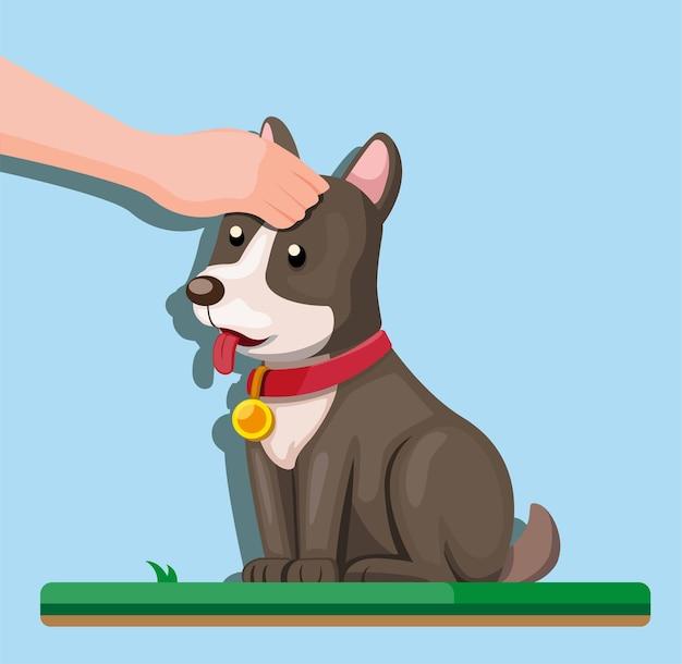 Menselijke hand aanraken puppy, hond aaien in cartoon vlakke afbeelding Premium Vector