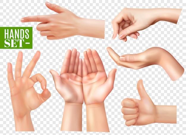 Menselijke handen gebaren realistische afbeeldingen ingesteld met wijzende vinger ok teken duim omhoog transparant Gratis Vector