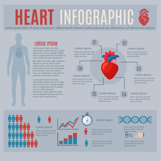 Menselijke hartinfographics met lichaamssilhouet en grafieken Gratis Vector