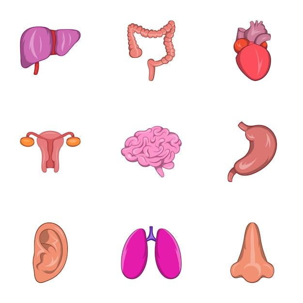 Menselijke organen iconen set, cartoon stijl Premium Vector