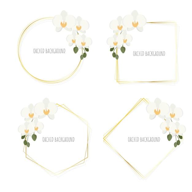 Minimale vlakke stijl witte phalaenopsis orchidee krans met gouden frame collectie geïsoleerd op wit Premium Vector