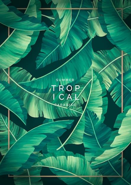 Moderne tropische achtergrond met gouden frame Gratis Vector