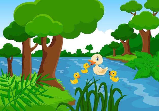 Moeder eend zwemt met haar drie kleine schattige eendjes in het meer Premium Vector