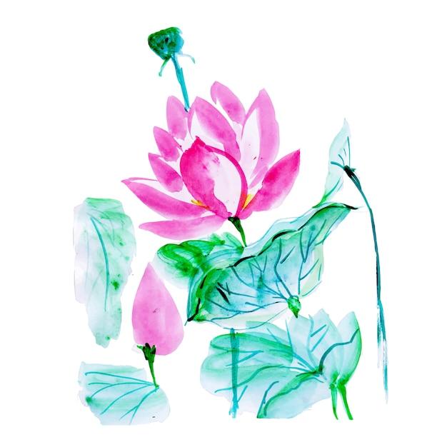 Mooi aquarel bloemenelement Gratis Vector