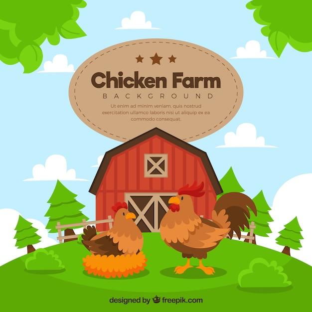 Mooie boerenachtergrond met kip en haan Gratis Vector