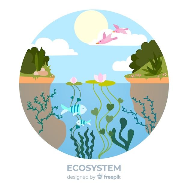 Mooie ecosysteemachtergrond Gratis Vector