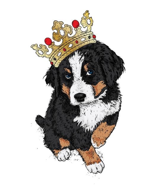 Mooie hond in de kroon. de berner zenenhund. Premium Vector