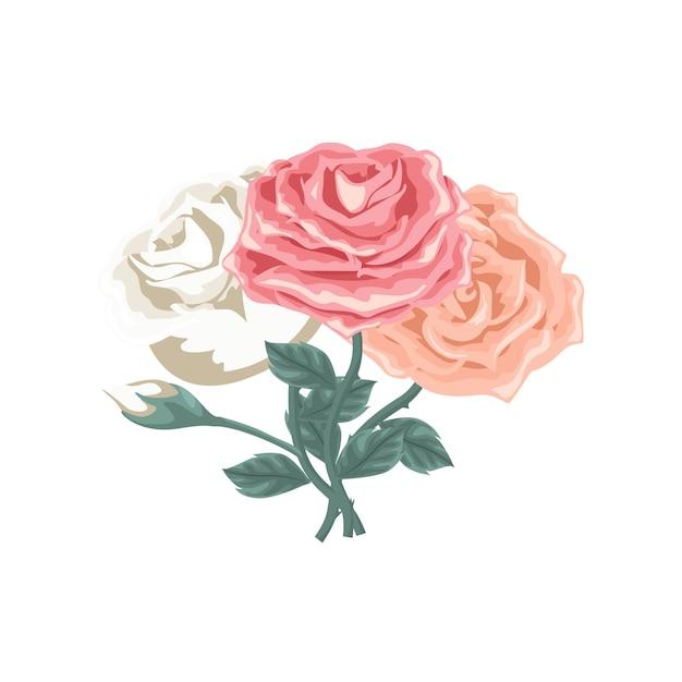 Mooie set rozen van verschillende kleuren Premium Vector