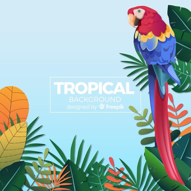 Mooie tropische achtergrond met platte ontwerp Gratis Vector