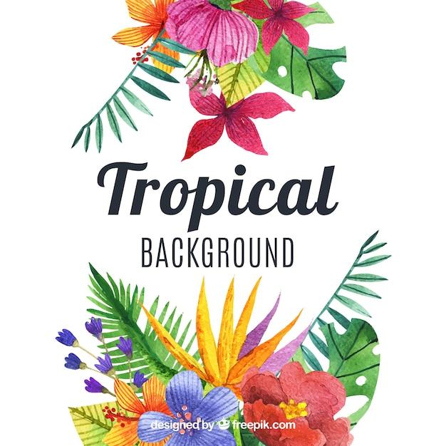 Mooie waterverf tropische achtergrond Gratis Vector
