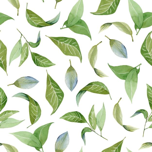 Naadloos bloemenpatroon met waterverf groene bladeren Premium Vector