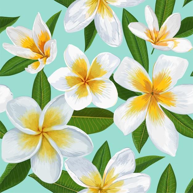 Naadloos patroon met bloemen plumeria Premium Vector
