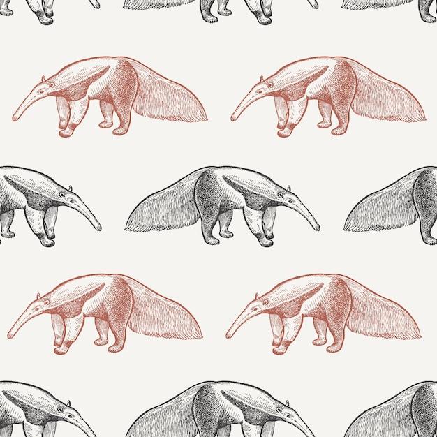 Naadloos patroon met gigantische miereneter. Premium Vector