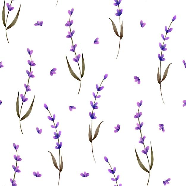 Naadloos patroon met handgeschilderde lavendel en bloemblaadjes Premium Vector