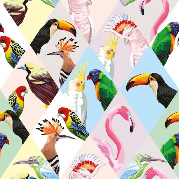 Naadloos patroonbehang met veelkleurige lapwerk tropische vogels Premium Vector