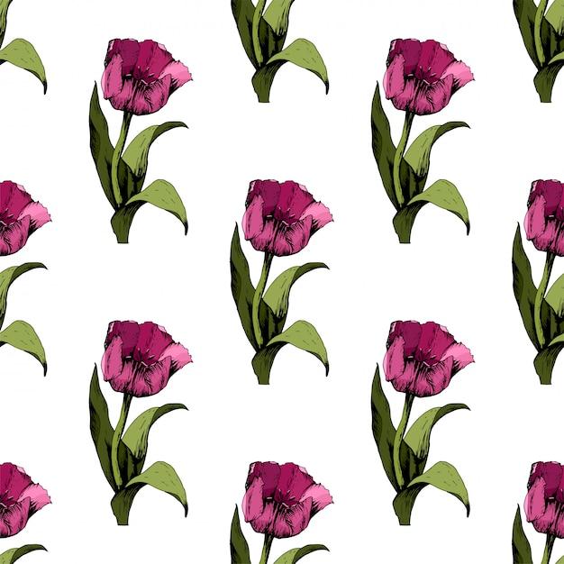 Naadloze achtergrond met gekleurde roze tulpen Premium Vector