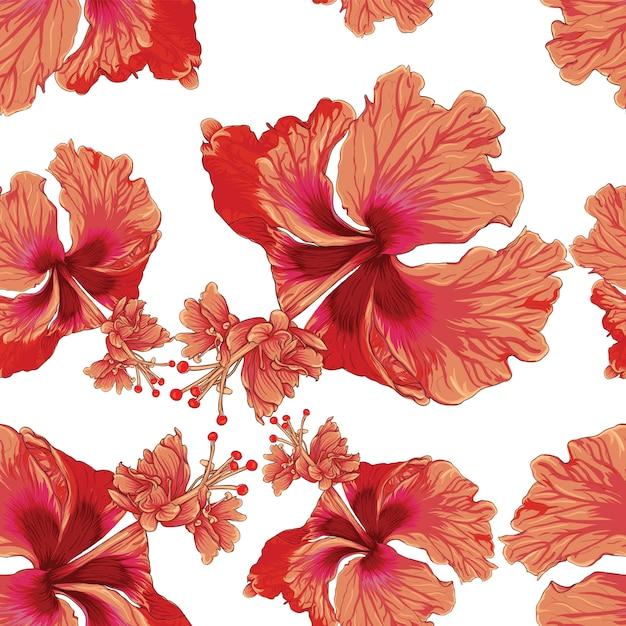 Naadloze patroon kleurrijke hibiscus bloemen witte achtergrond. Premium Vector
