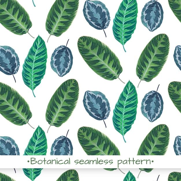 Naadloze patroon met bladeren, botanische textuur Premium Vector