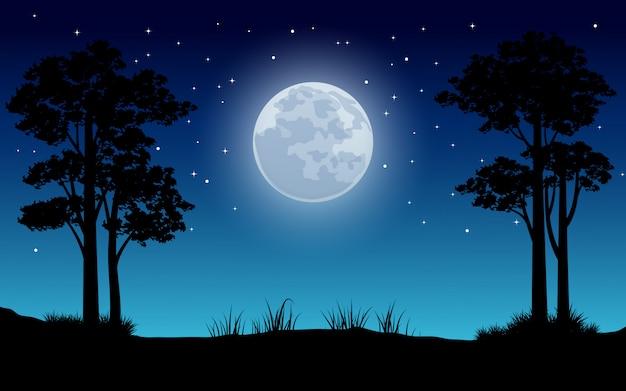 Nachtlandschap met volle maan en sterren Premium Vector