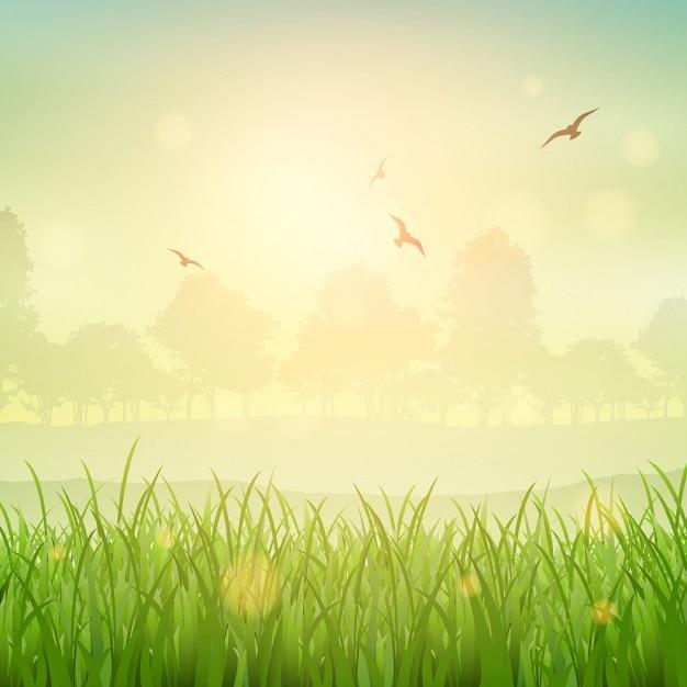 Natuur achtergrond van een met gras begroeide landschap Gratis Vector