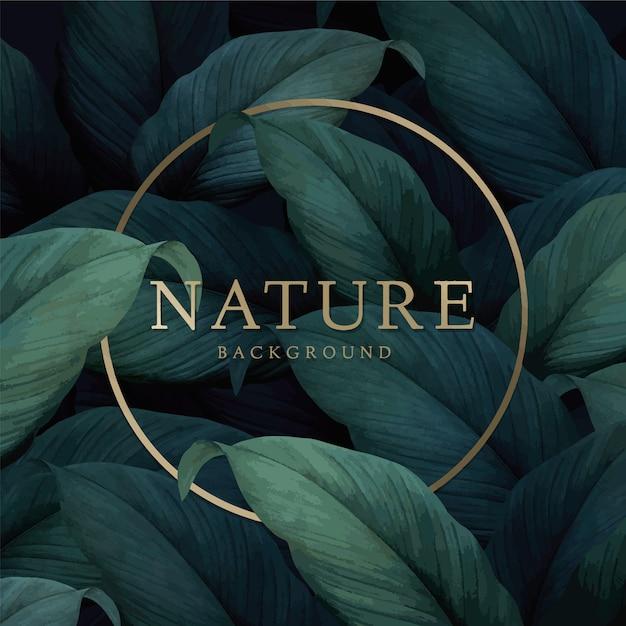 Natuur achtergrond Gratis Vector